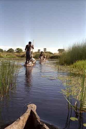 Chief island. Botswana