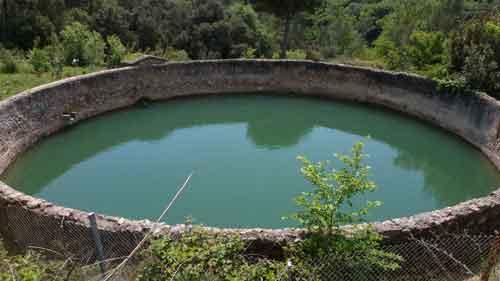 Bassa de can Girona