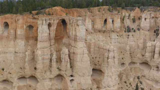 Bryce. Pinacles i coves