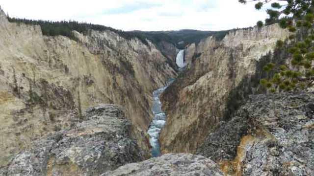 Canó Yellowstone