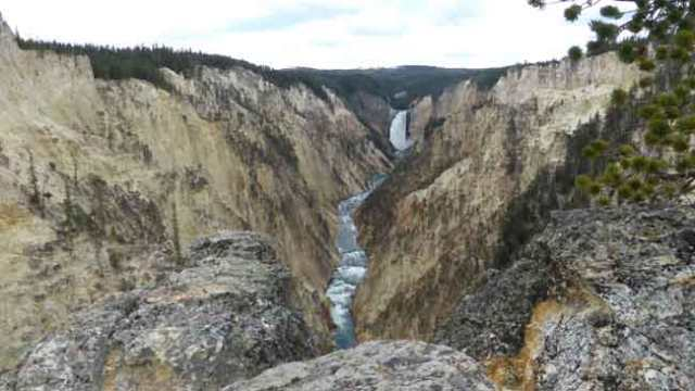 Canó Yellowstone