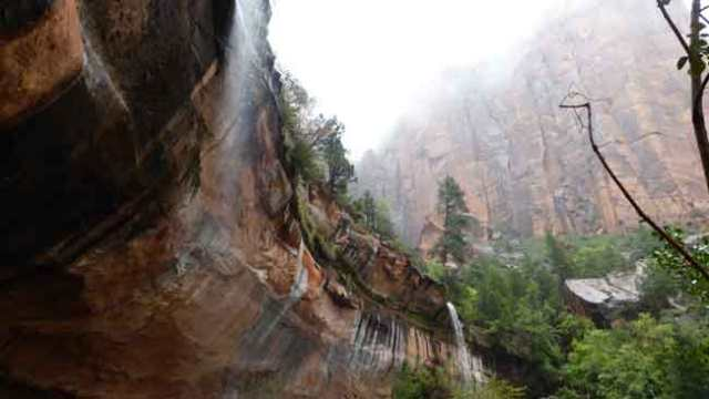 Zion. Emerald pool