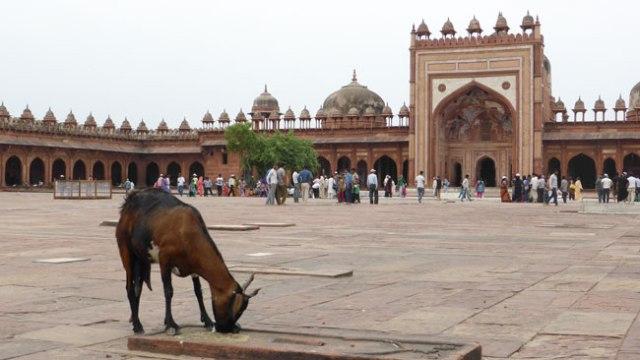 Fatehpur Sikri. Mesquita