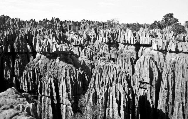 Grans Tsingys. Madagascar
