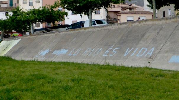 Riu Ebre a Miravet. Lo riu és vida