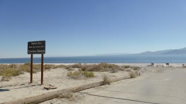 Corvina beach. Salton Sea