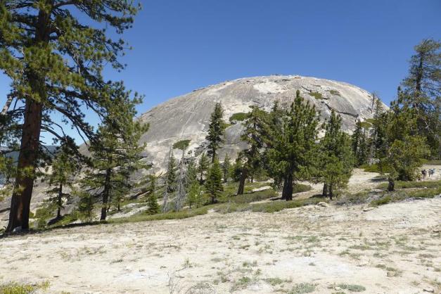 Sentinel Dome. Yosemite