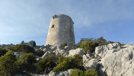 Talai d'Albercuix