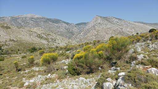 Koulala Valley. Chios