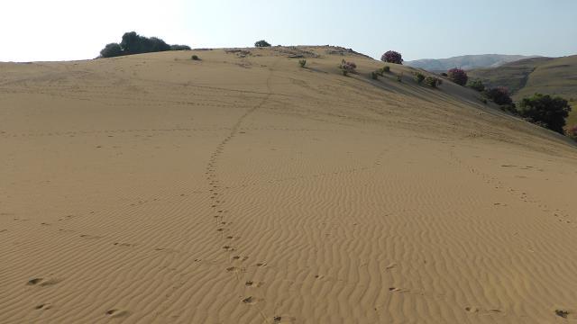 Dunes Limnos cap agrilia