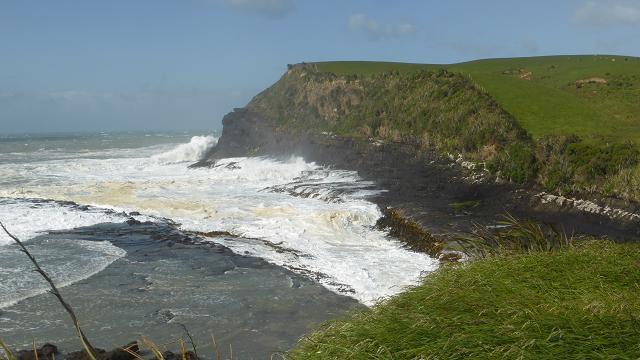 curio-bay-catlins-nova-zelanda