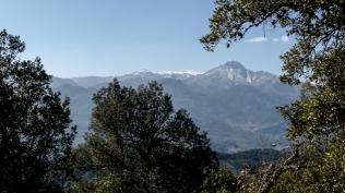 Massís Montseny. Foto: gloriacondal