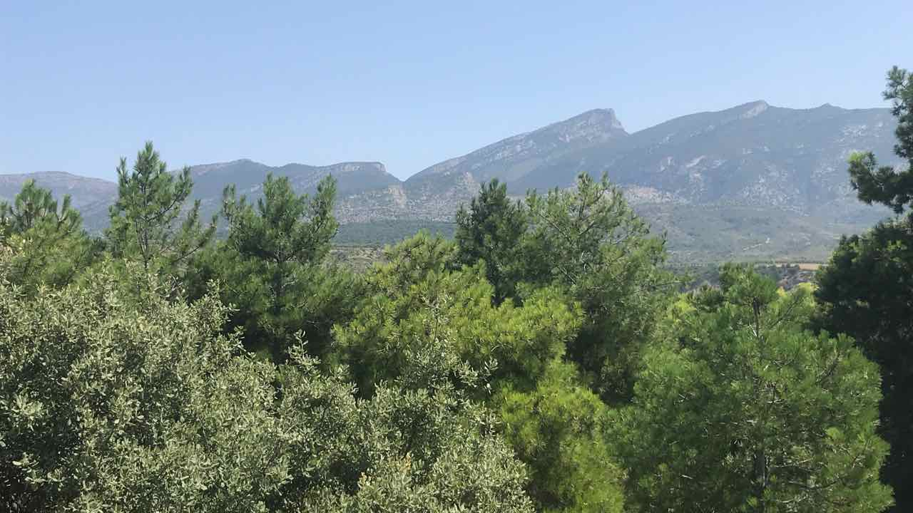 Gallinova-Roca Monteguida